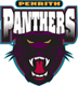 Rugby League Penrith Panthers